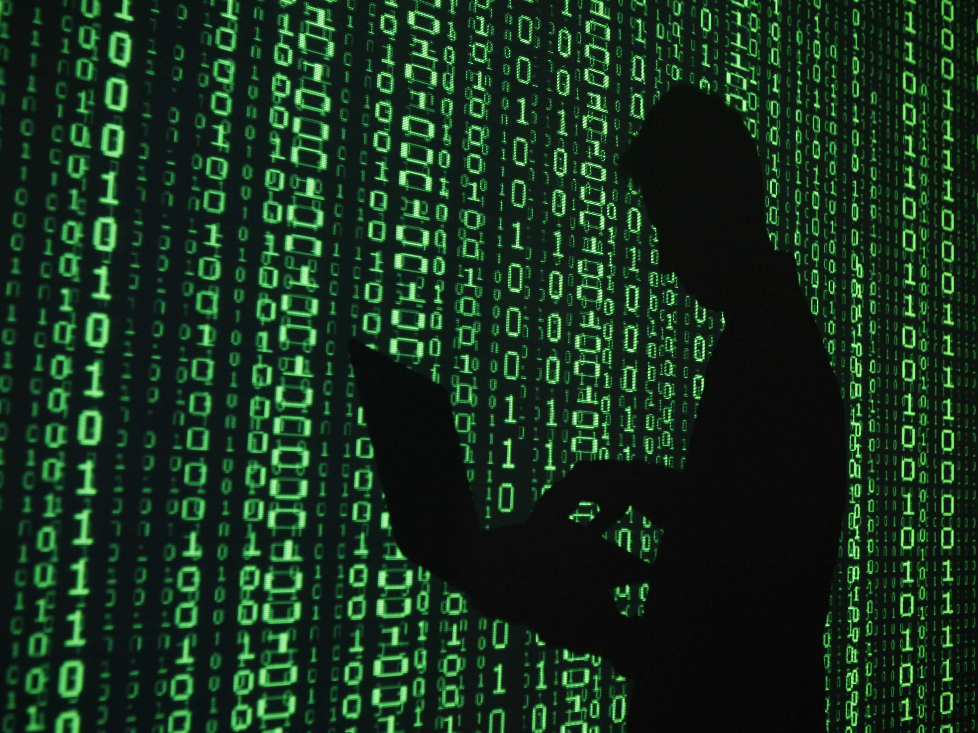 hackers opgepakt
